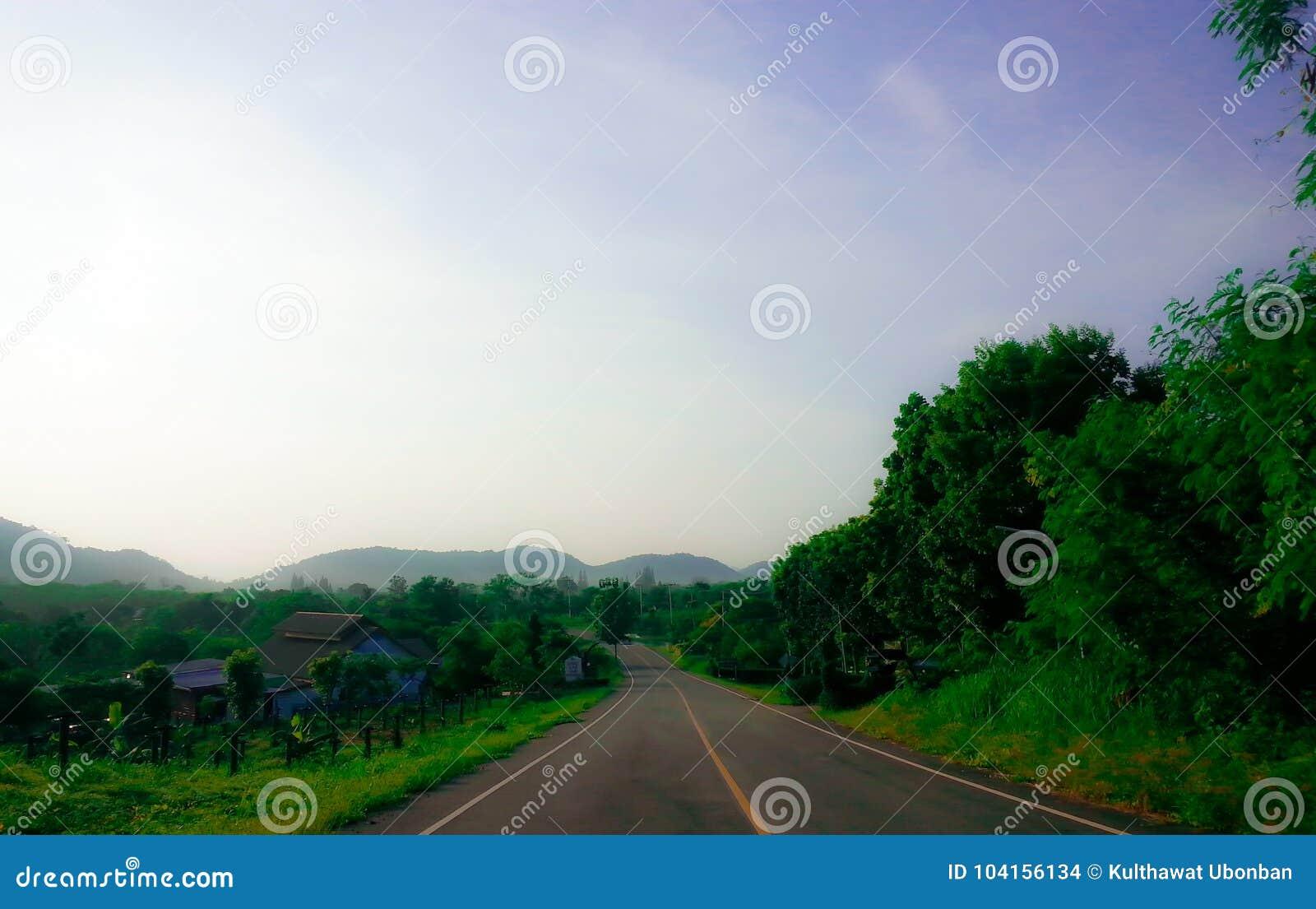 Road to dark tree