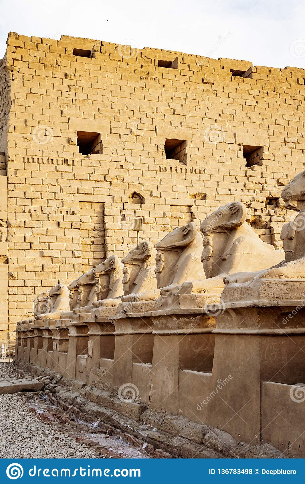 The Road To Karnak Temple With Ram Statues Stock Photo Image Of Religion Egyptian 136783498