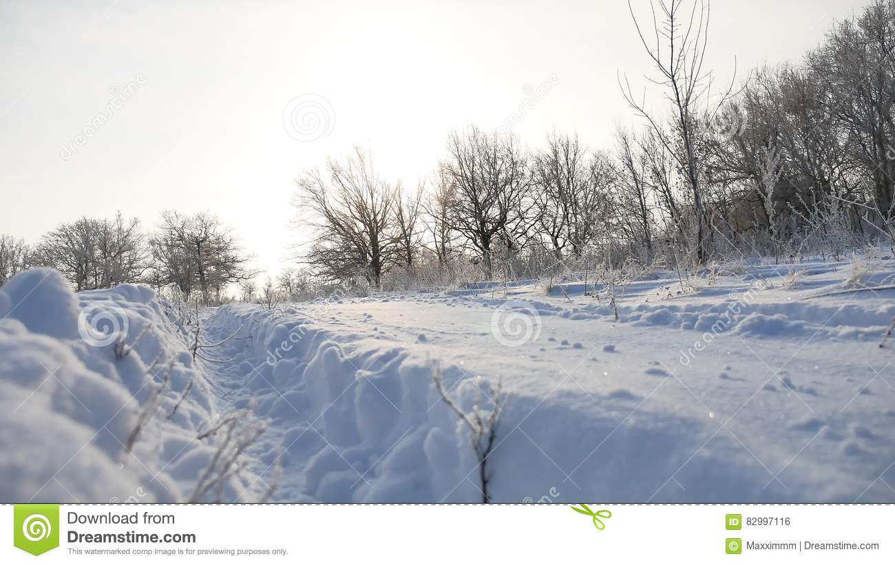 Beautiful Snowflake In The Sunlight: Road Trail In The Snow Sunlight Winter Landscape Beautiful