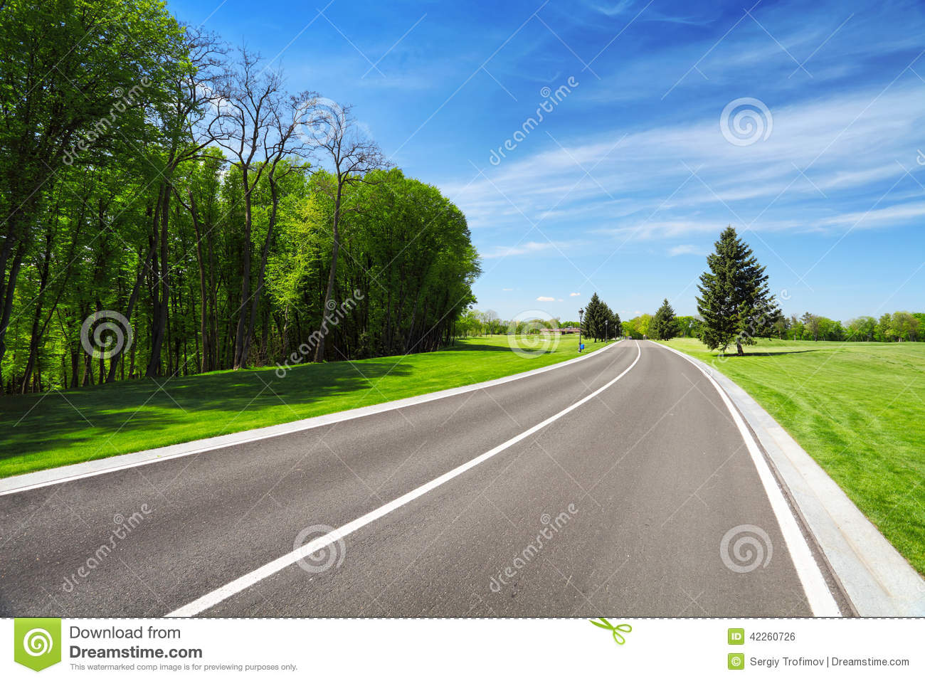 Landscaping between trees : Road between trees and grass on roadside stock photo