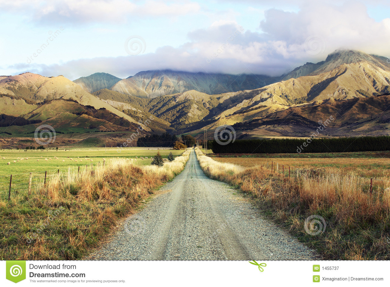Road Trip To New Zealand Royalty Free Stock Photography
