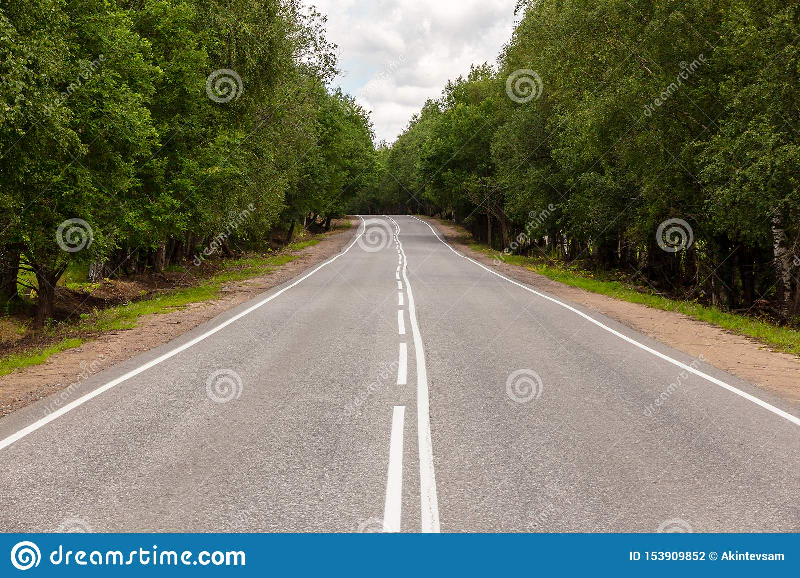 Road with white markings and green trees on the side of the road. View from the middle of the highway