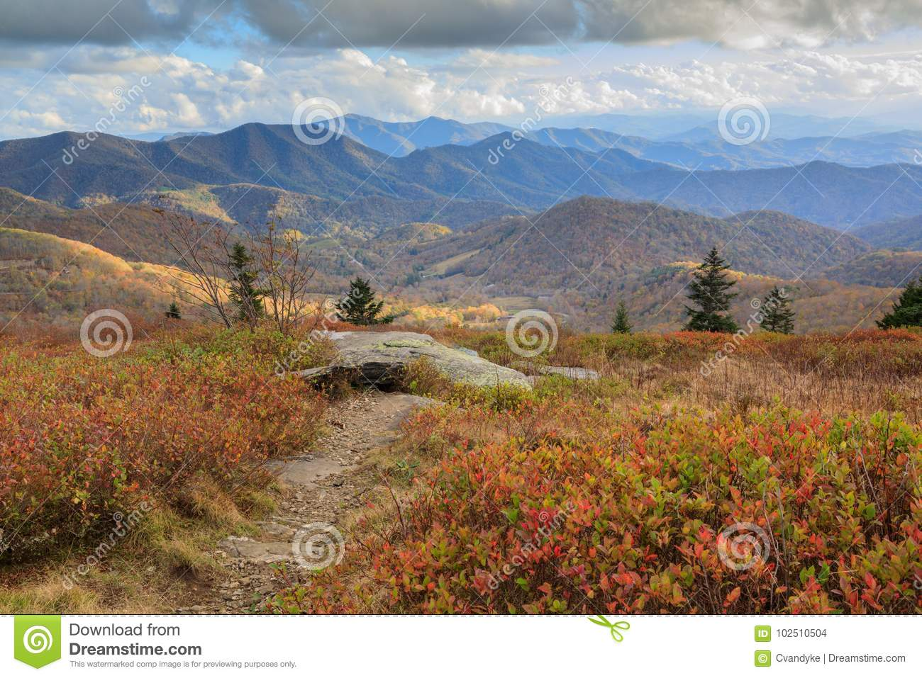 Roan Mountain NC Autumn Appalachian Trail Hike