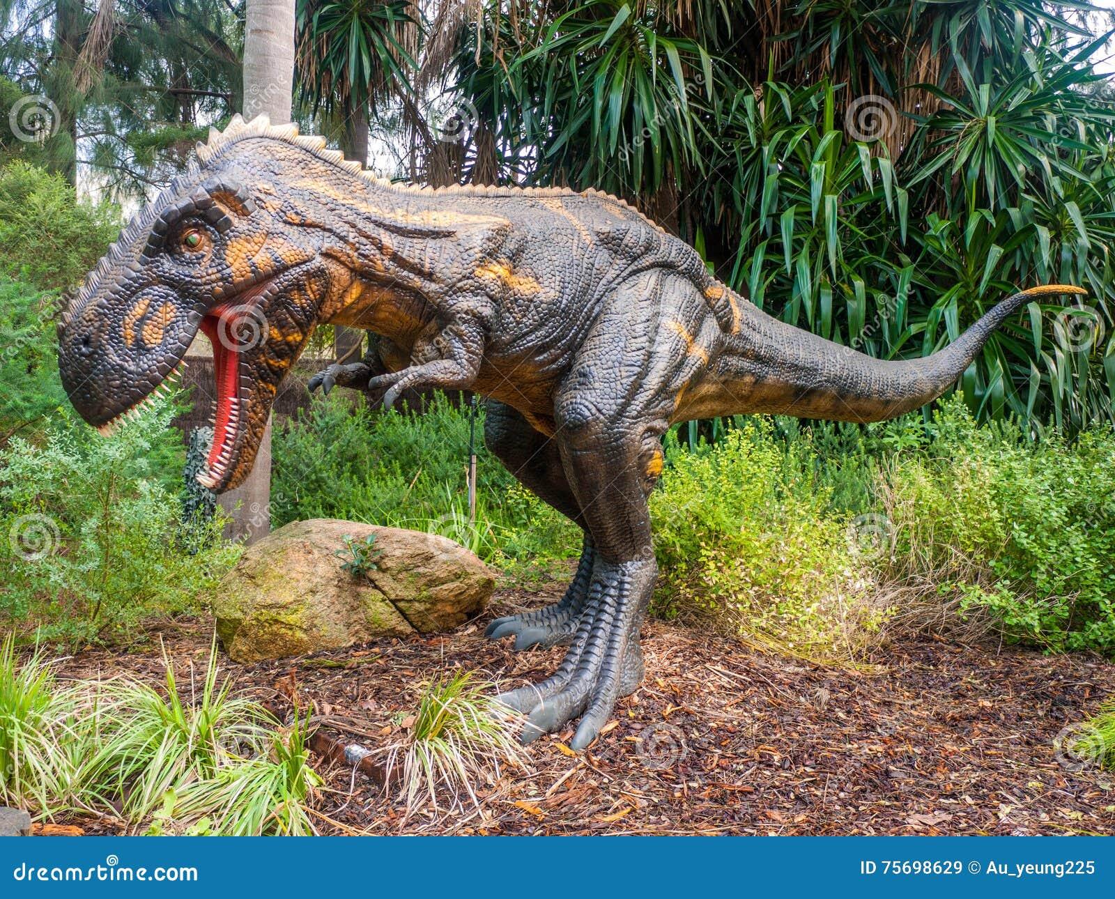 Exhibition Displays Perth : Roaring nanotyrannus display model in perth zoo editorial stock