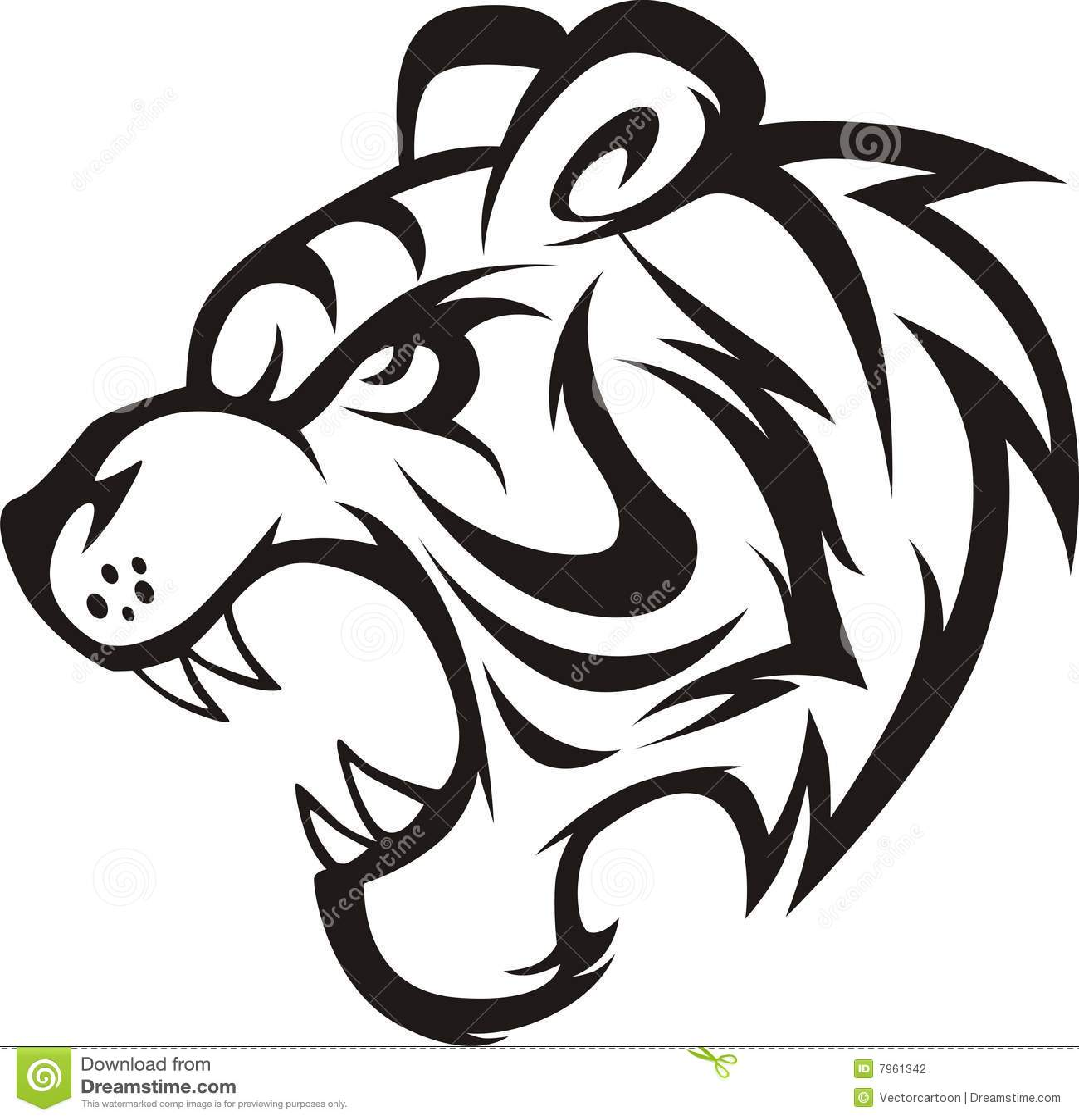 Roaring Tiger stock illustration. Illustration of sumatran ...