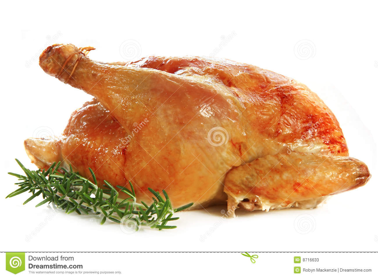 Roast Chicken stock image. Image of grilled, chicken ...