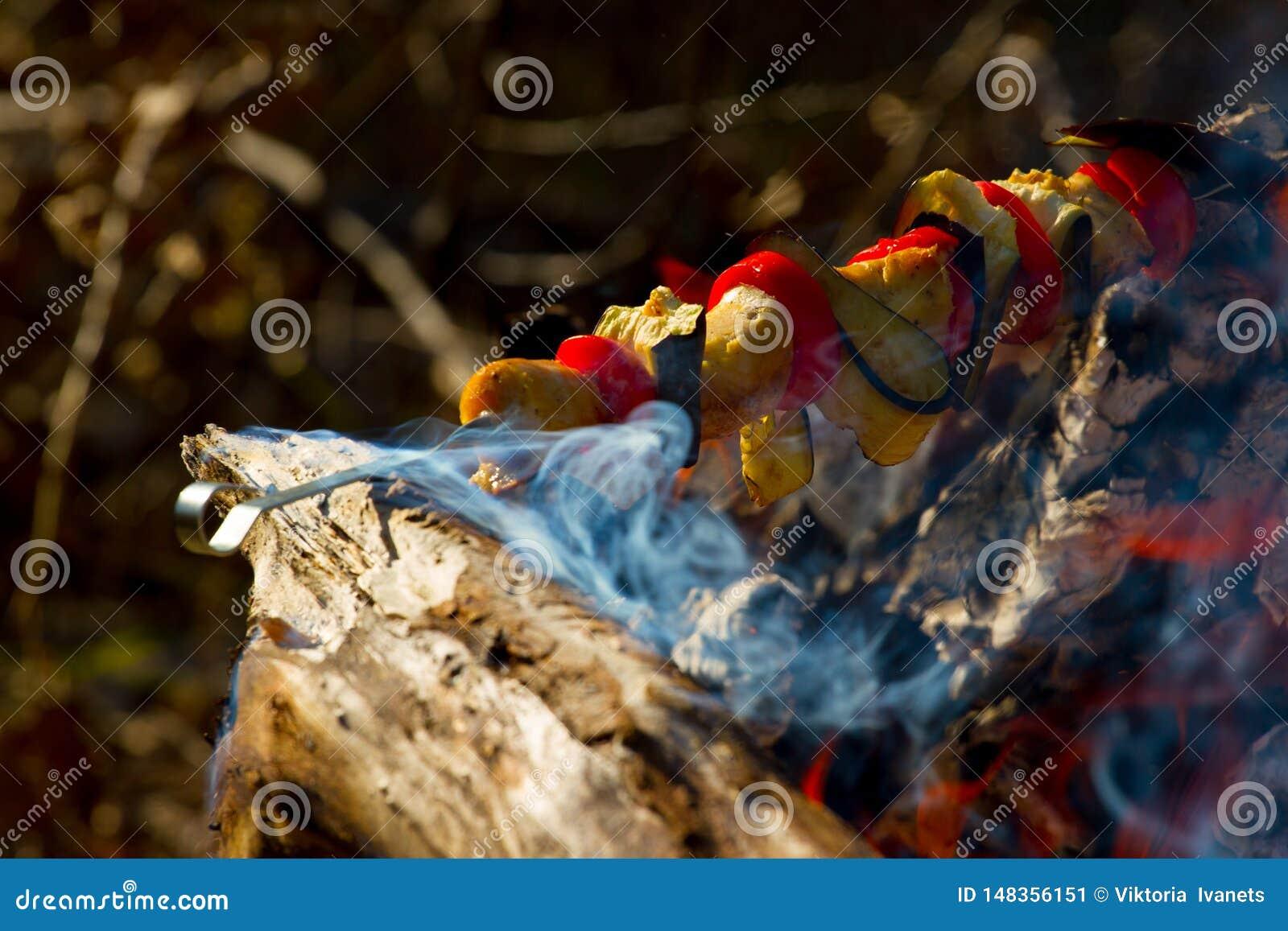 Roasted зажарило томат, баклажаны на ручке на открытом огне
