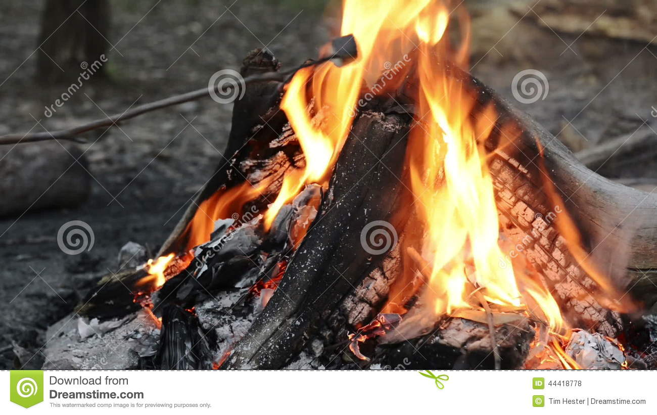 Roasting Marshmallows Over Fire Stock Footage