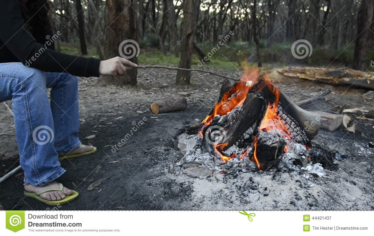 Roasting Marshmallows Over Fire Stock Video