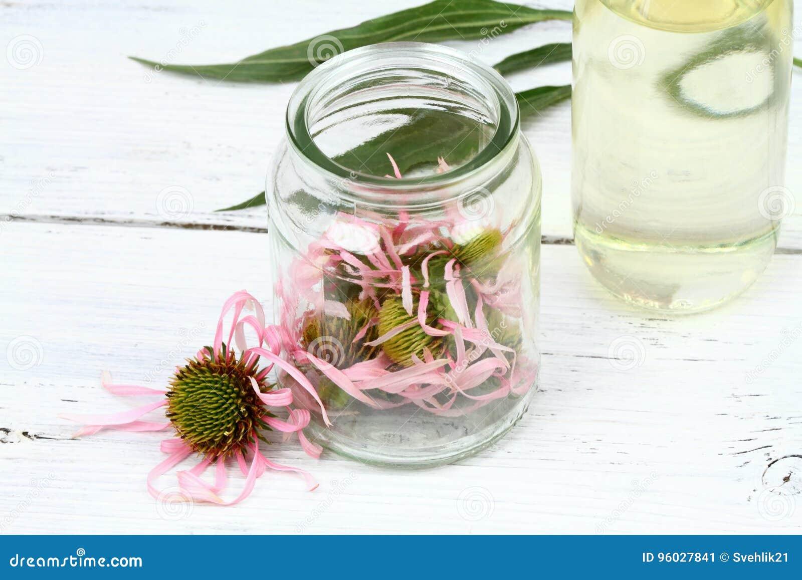 Robić tincture od Wąskiego liść purpur rożka kwitnie