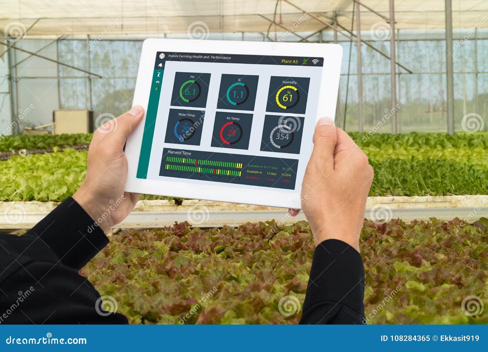 Robot 4 van de Iot slimme industrie 0 het landbouwconcept, industriële agronoom die, landbouwer te controleren tablet gebruiken,
