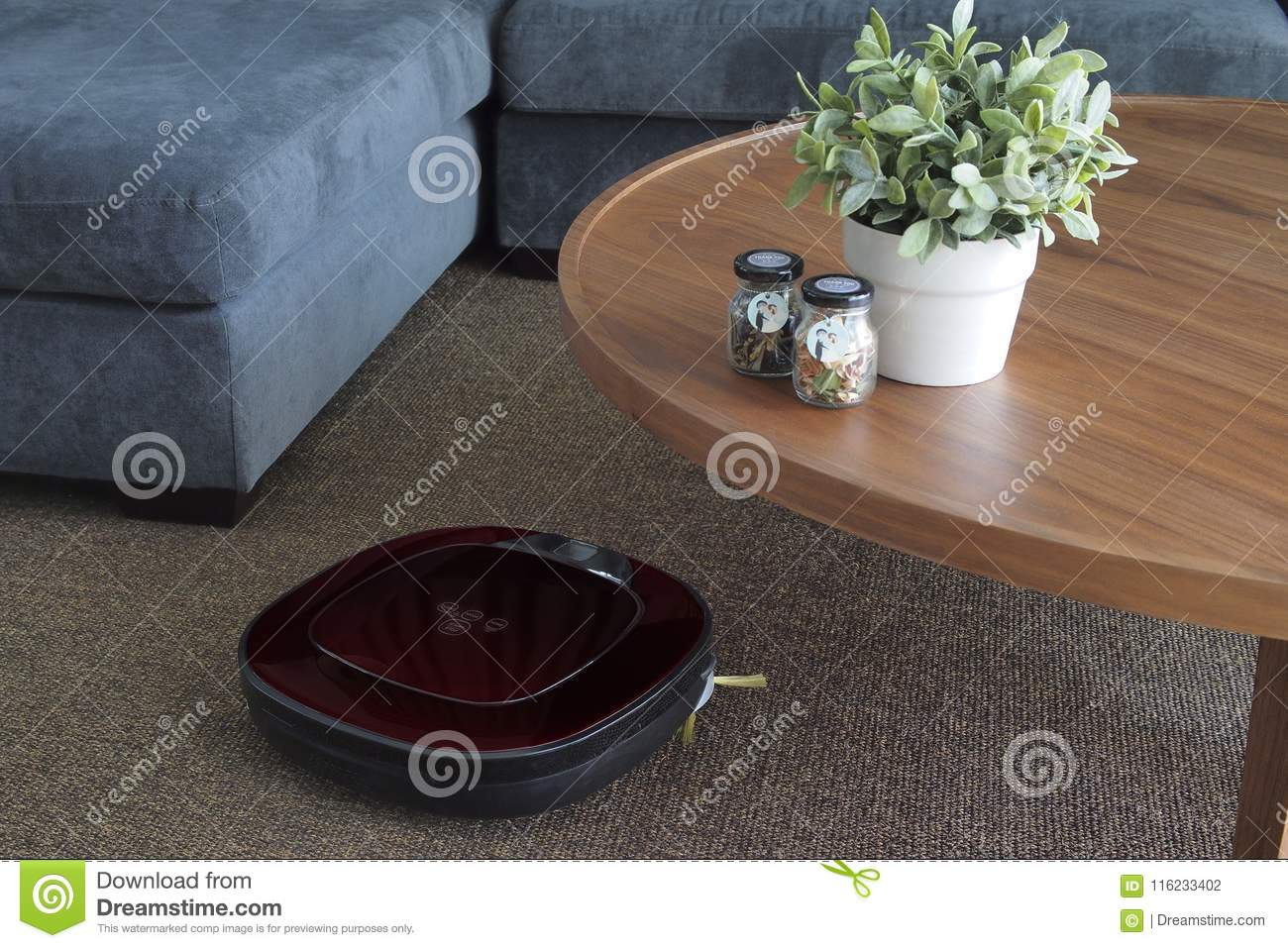 Robotic Vacuum Cleaner On Carpet In Living Room Stock Photo Image