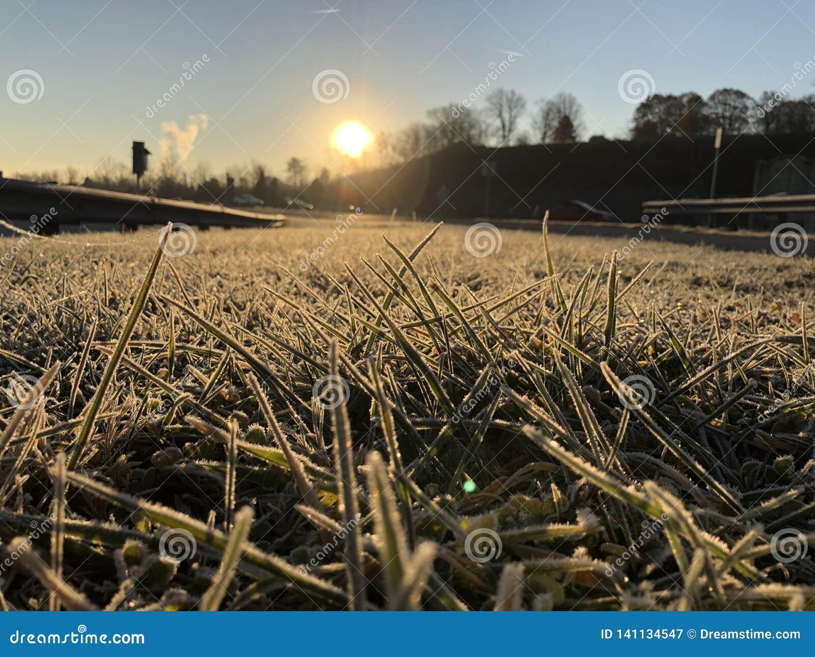 Rocío de la salida del sol de la mañana