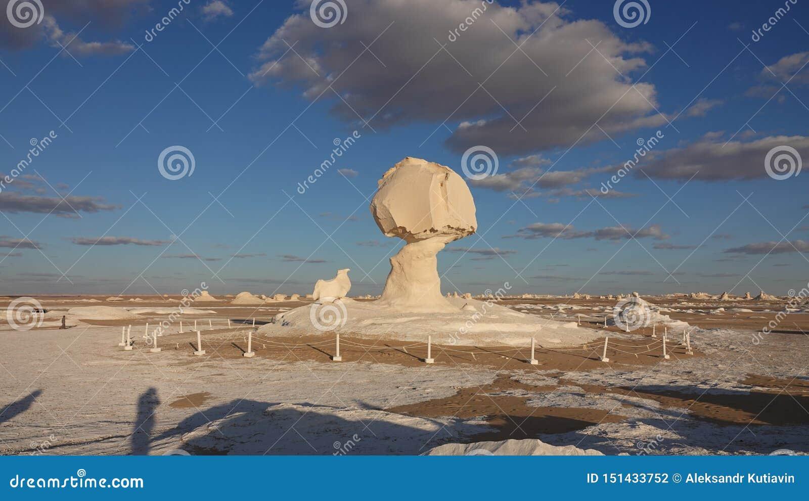 Roca blanca en desierto en Egipto