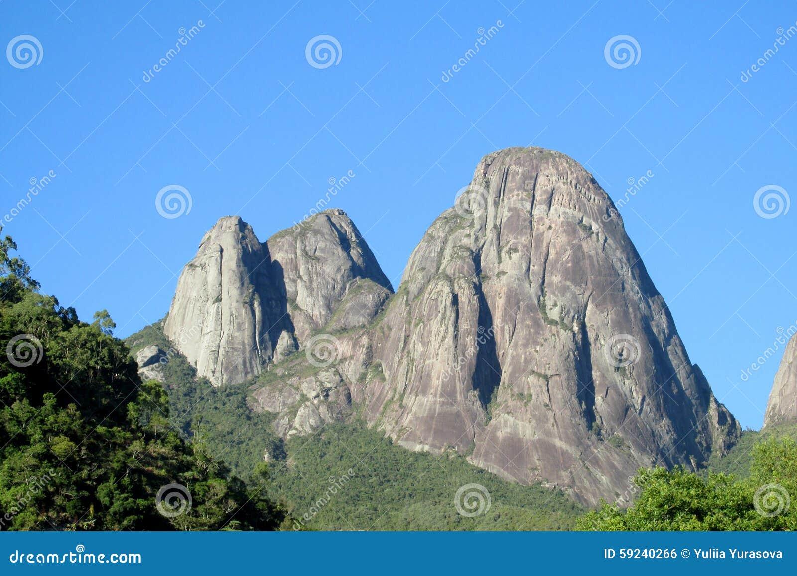 Download Roca Lisa Hermosa En Bosque Verde Foto de archivo - Imagen de américa, alpestre: 59240266