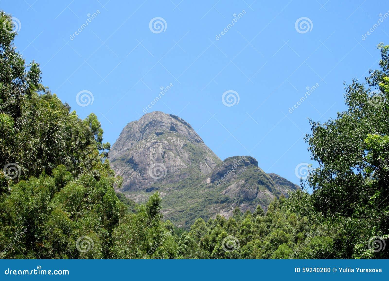 Download Roca Lisa Hermosa En La Selva, El Brasil Foto de archivo - Imagen de formaciones, aislante: 59240280
