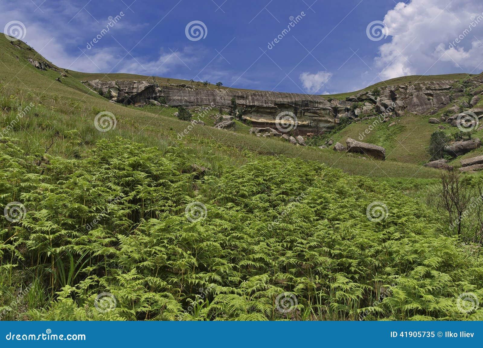 Roca sedimentaria interesante en el castillo de Giants