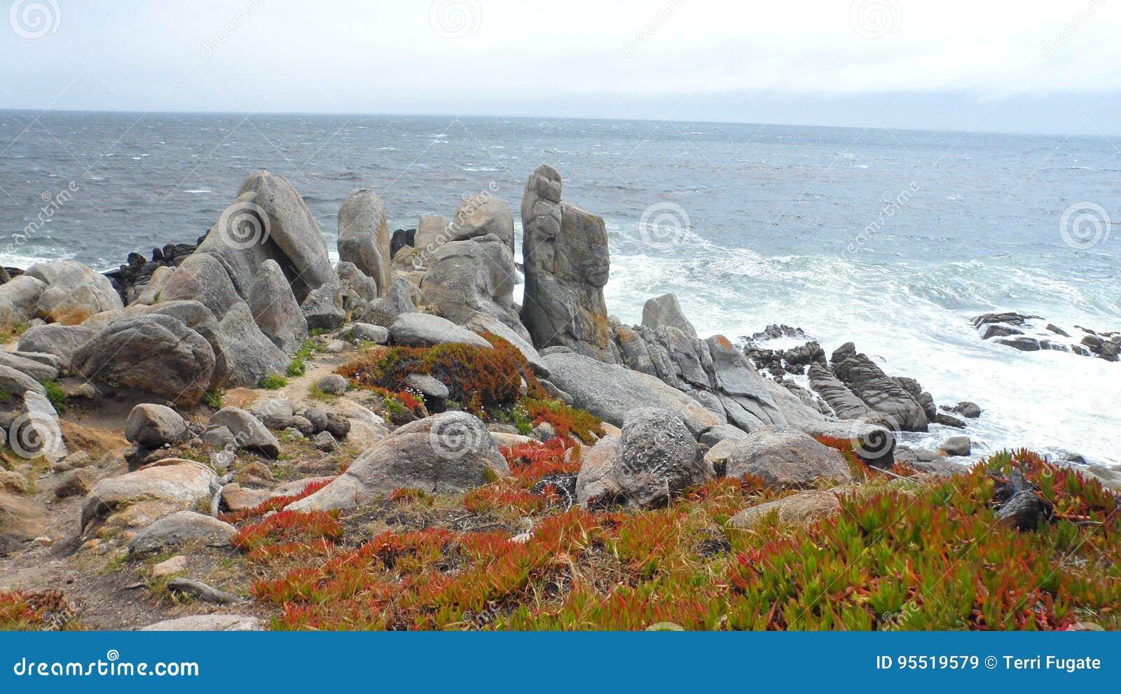 Rocas de la costa de Monterey