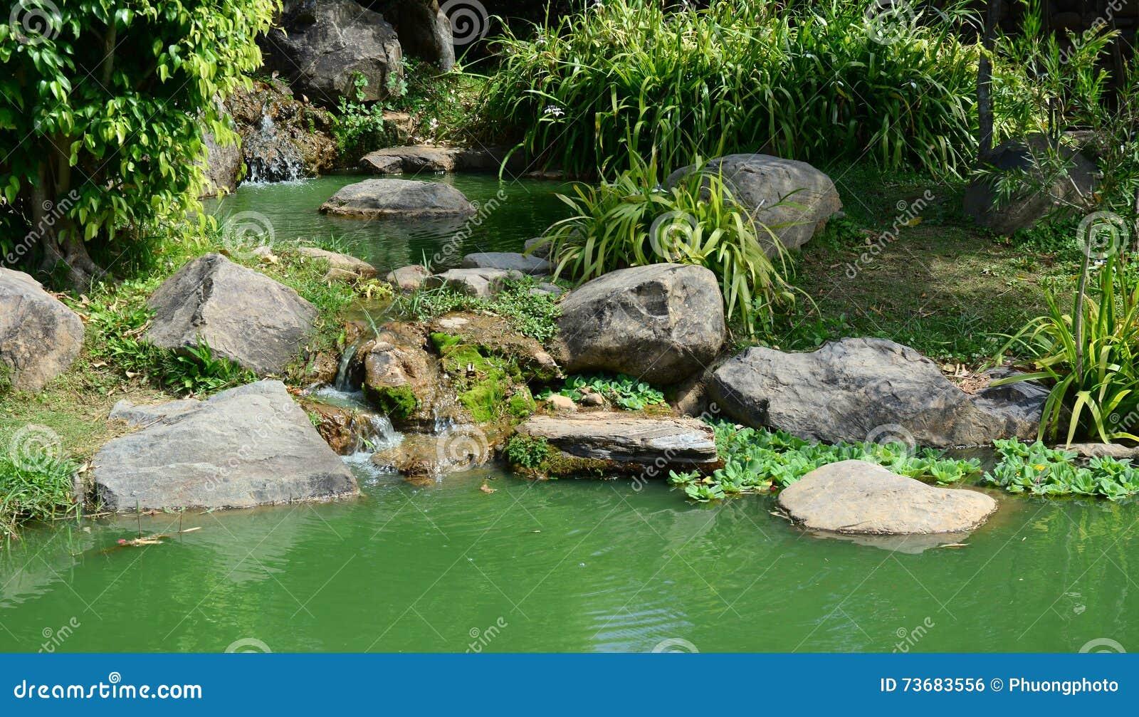 Rocce ed erba al giardino in dalat vietnam fotografia - Erba da giardino resistente ...