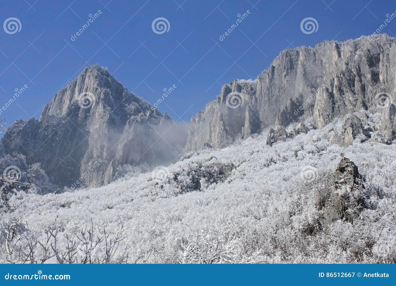 Rocce, neve ed alberi