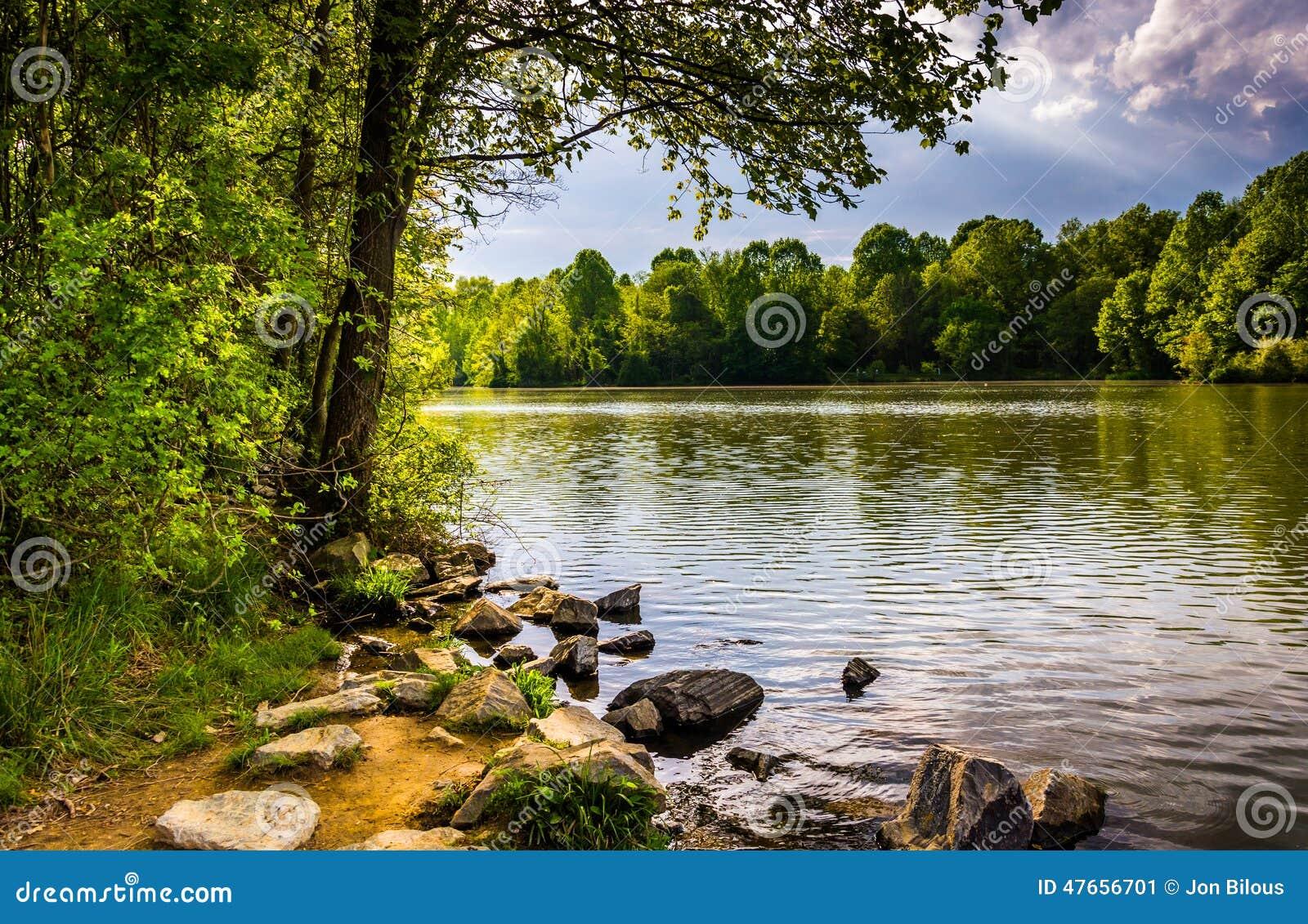 Rochas e árvores ao longo da costa do lago centenário no Centennial