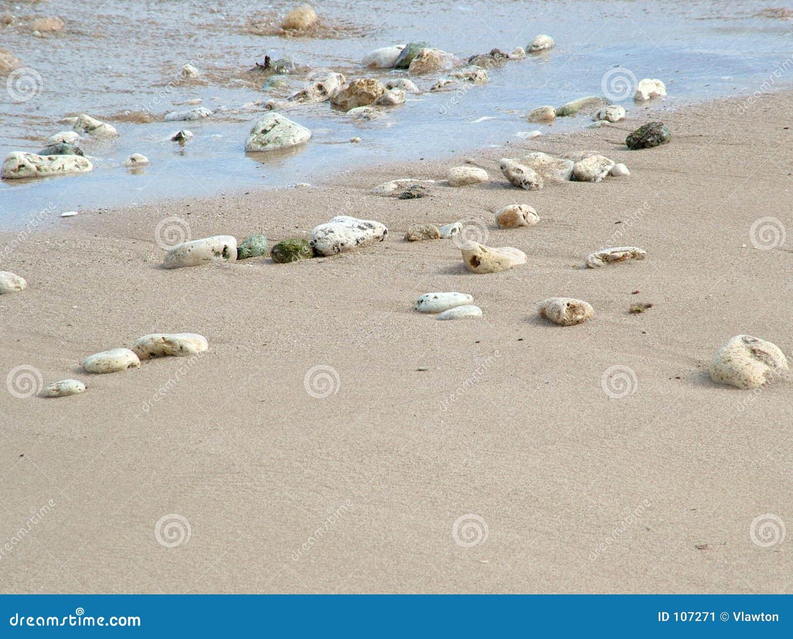 Rochas e escudos na praia