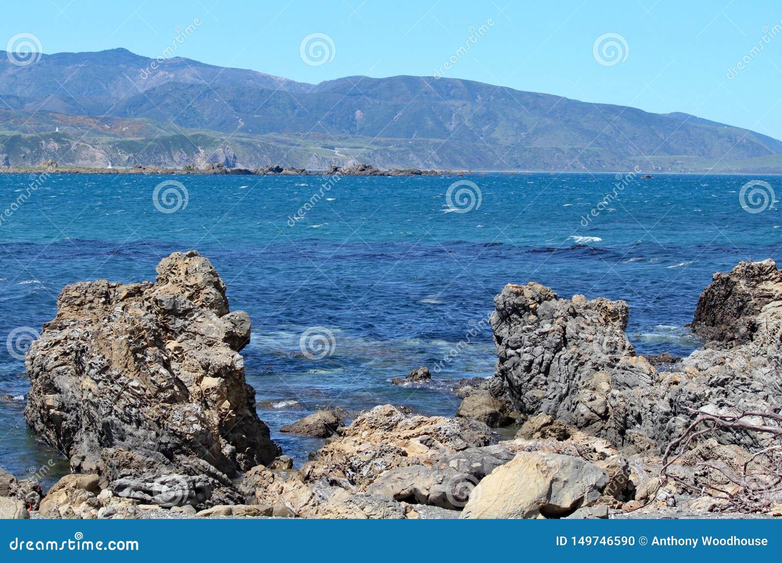 Rochas entalhadas na borda da baía em Wellington, Nova Zelândia de Lyall