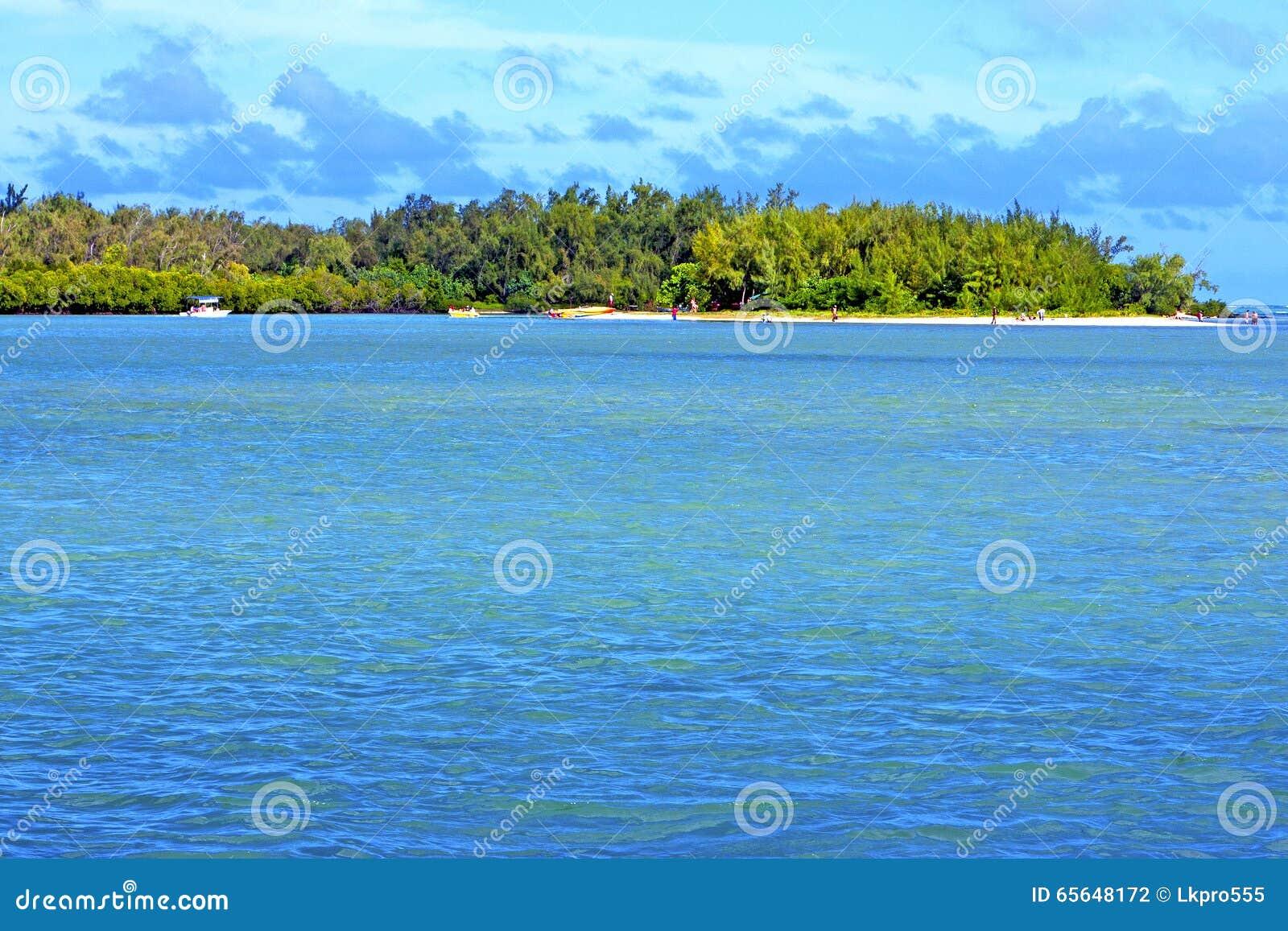 Roche de personnes d algue de beach ile du cerfs