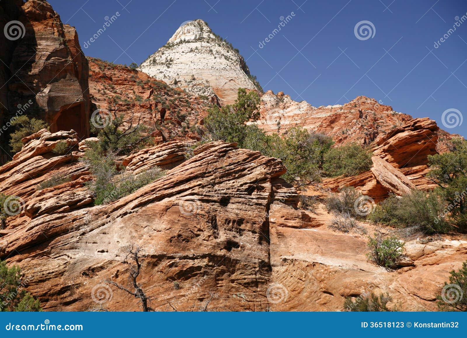 Roche en Zion National Park, Utah, Etats-Unis