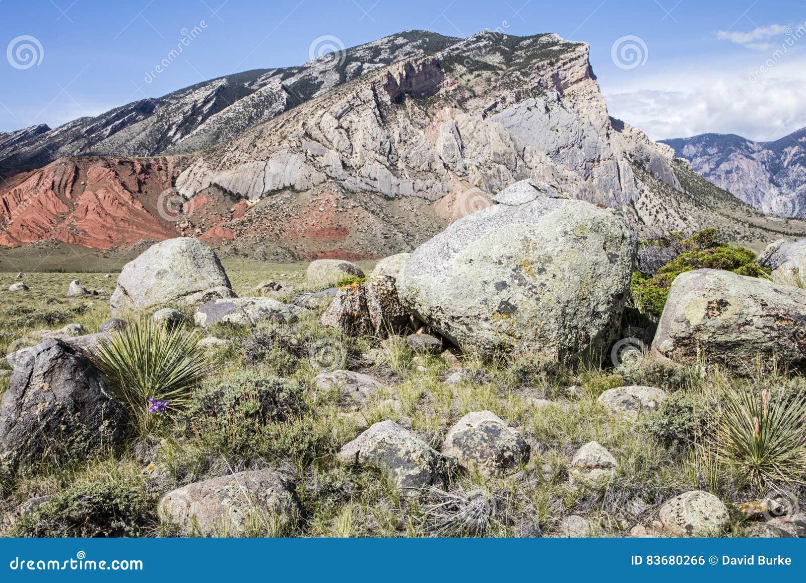 Rochers de montagne de désert de formations géologiques