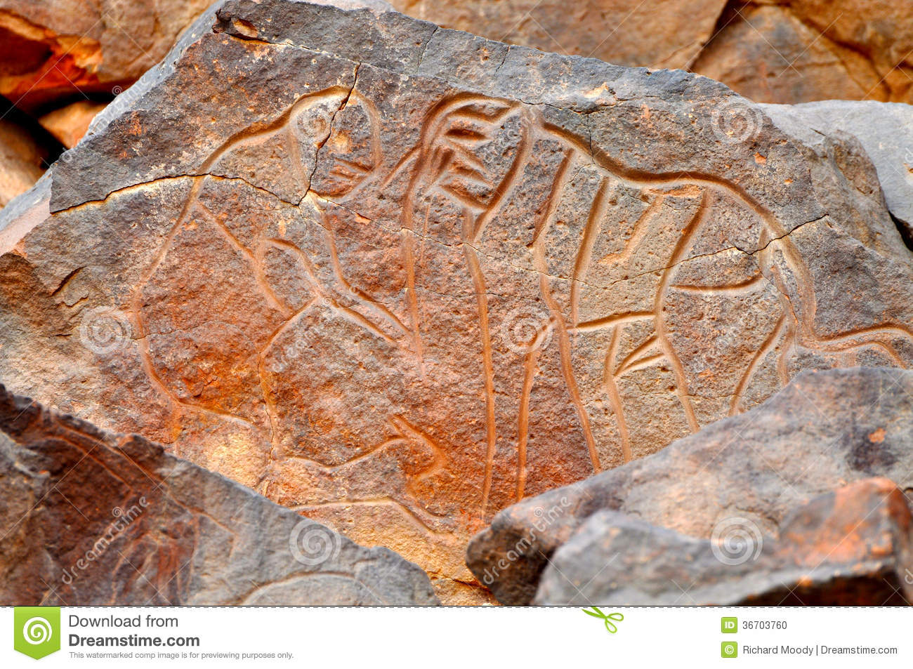 rock carving of elephant stock photo  image of desert