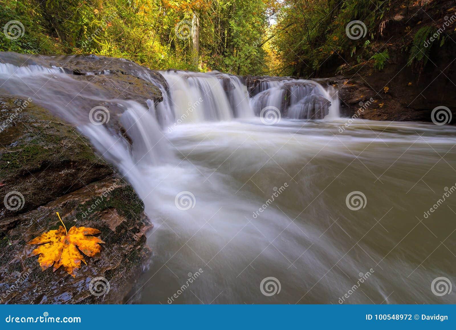 Rock Creek i den lyckliga dalen Oregon USA