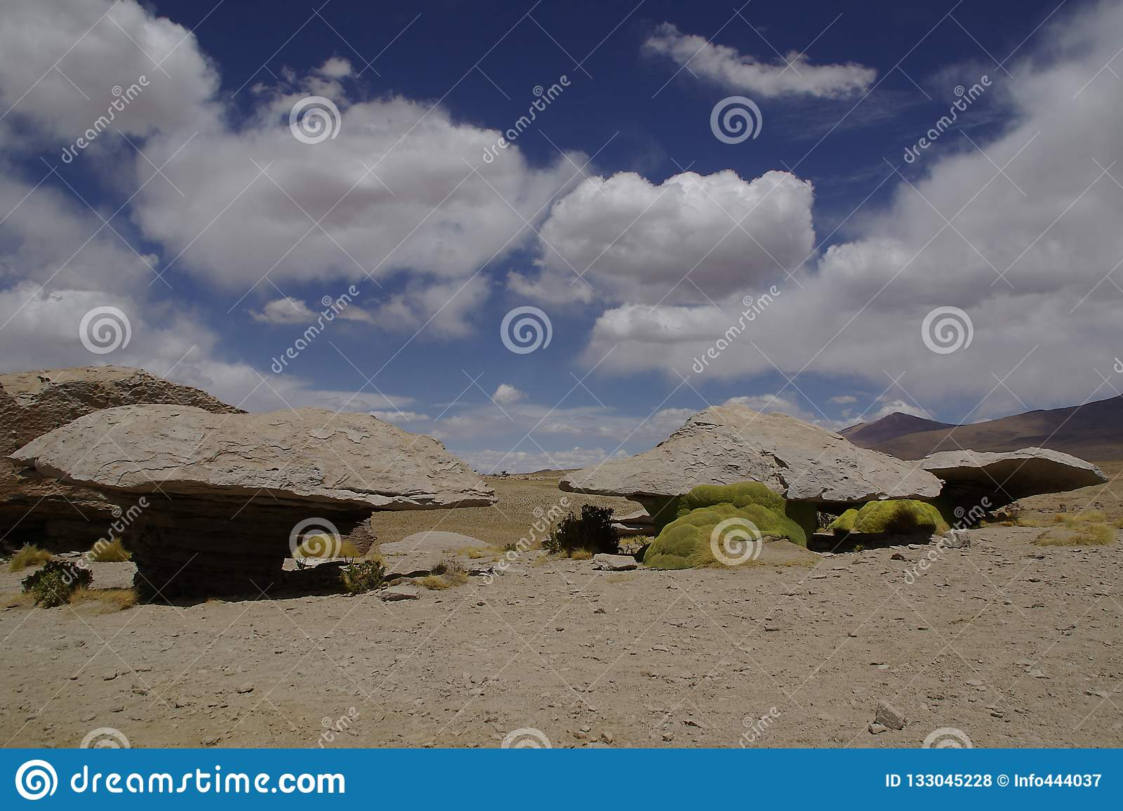 Rock Formation In The Landscape Of Andes Mountains In Bolivia Stock Photo Image Of Panorama Bolivian 133045228