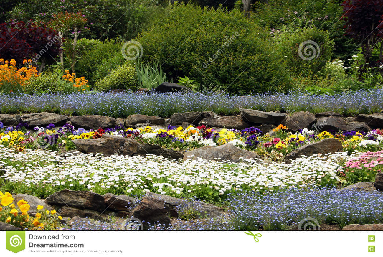Rock Garden With Flowering Perennials Stock Image Image Of Spring