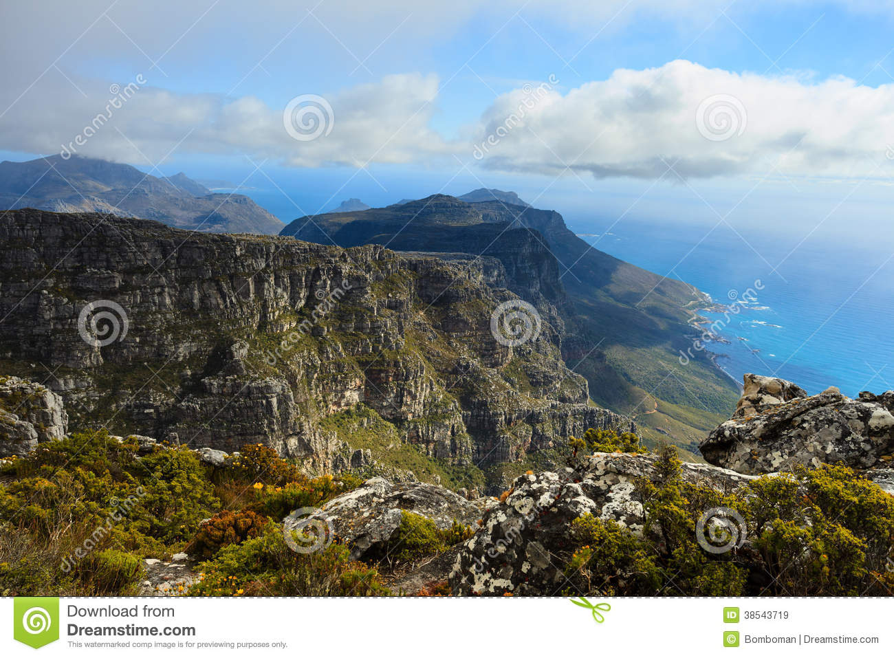 Rock and landscape on top of table mountain in south af for Landscaping rocks cape town