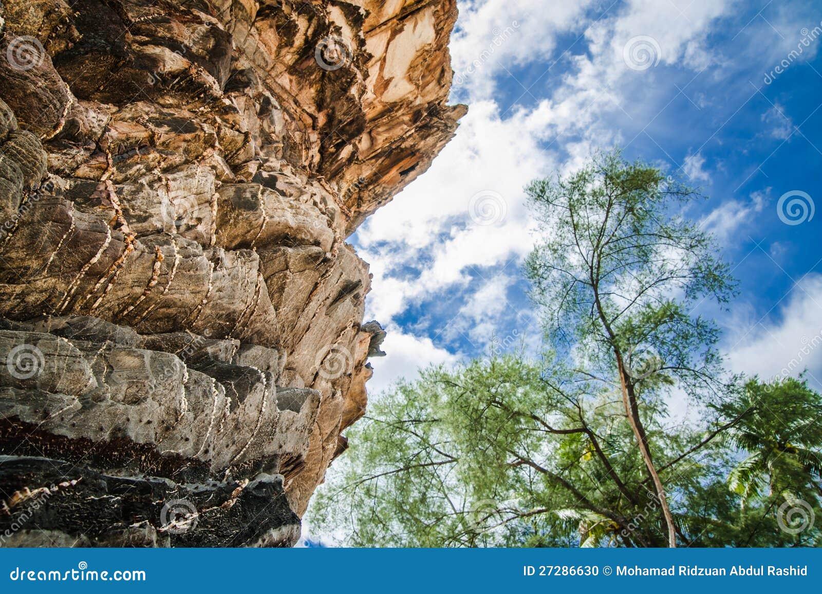 Rock och Trees