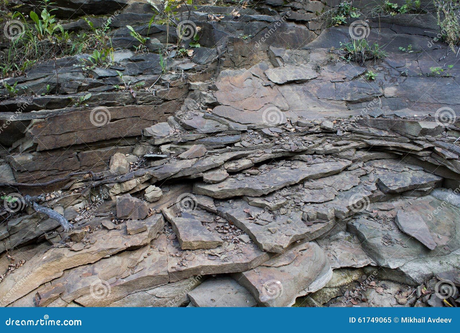Sedimentary Sha...