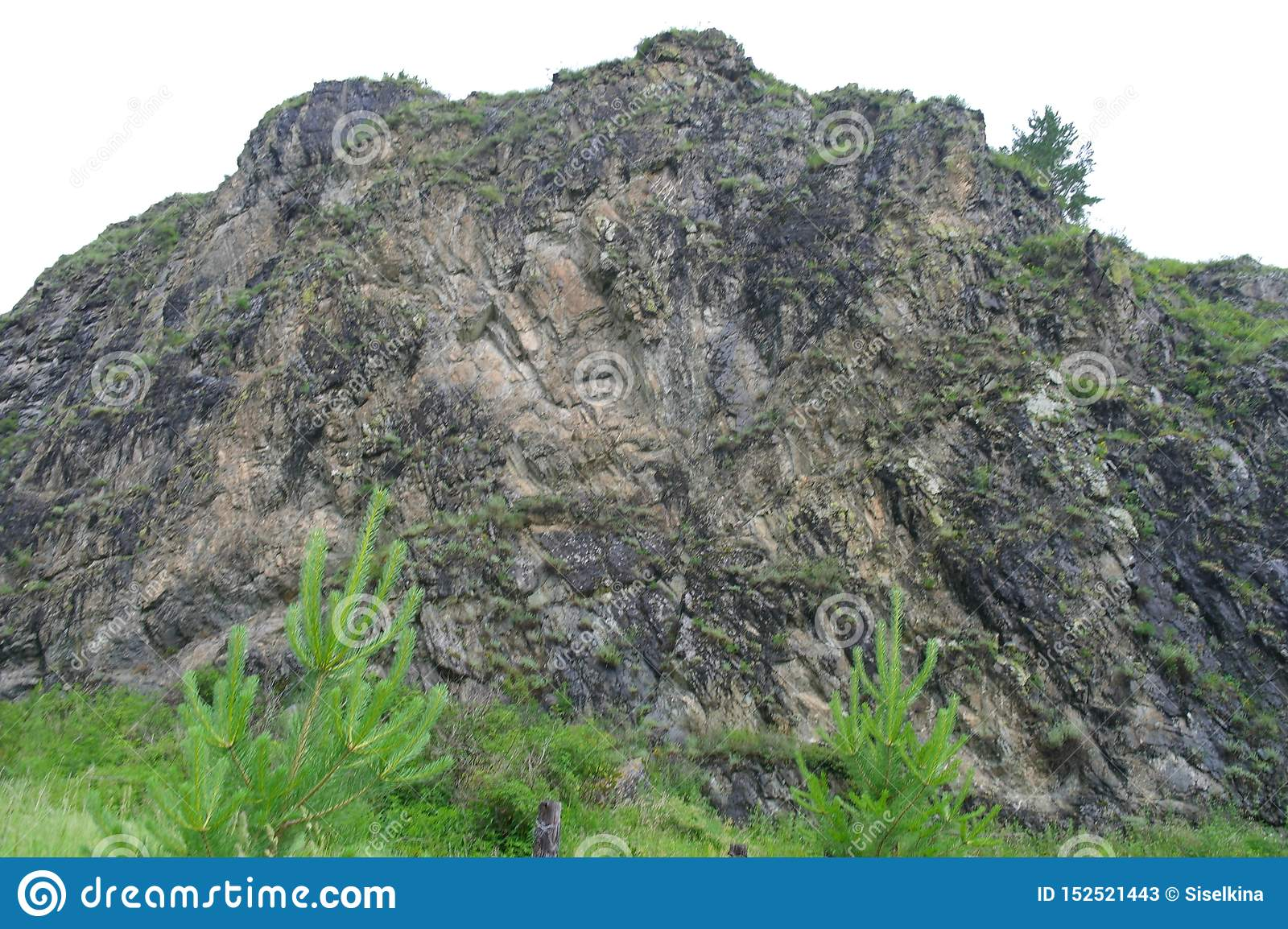 Centuries-old mountain range, rock covered with greenery.