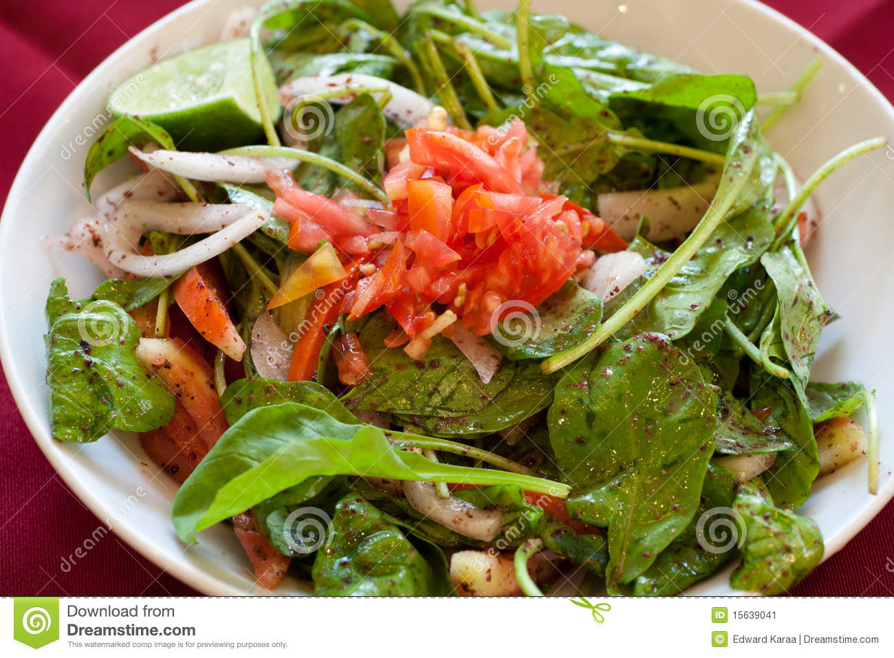 Rocket salad lebanese food stock image image 15639041 for About lebanese cuisine