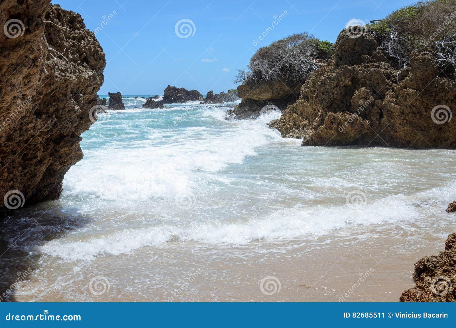 Rockowe formacje żlobili siłą seawater Textured skały z wpływem fala w Coqueirinho plaży, Joao Pessoa, Br