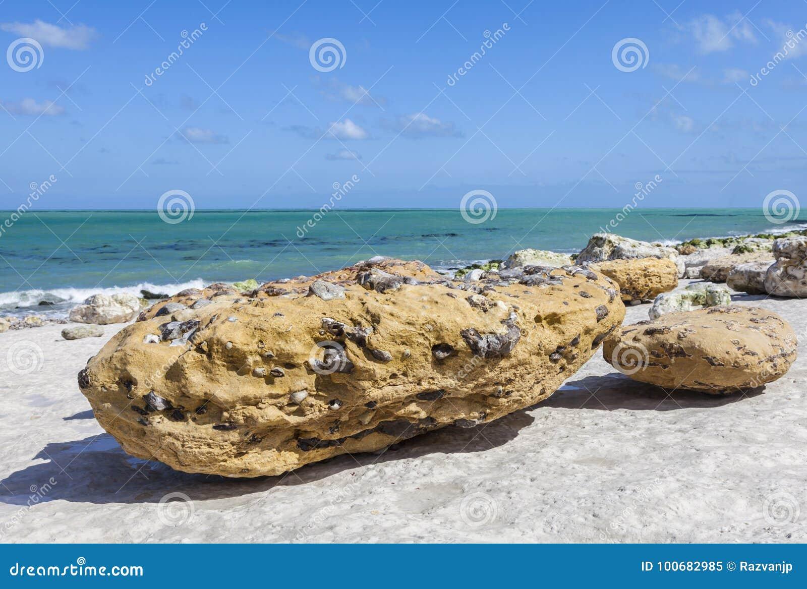 Rocky Beach Abstract