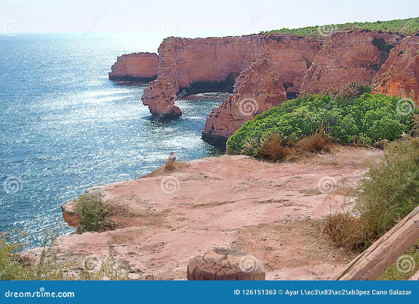 Rocky Landforms ed il mar Mediterraneo sul ` del da Marinha della Praia del ` - Portogallo