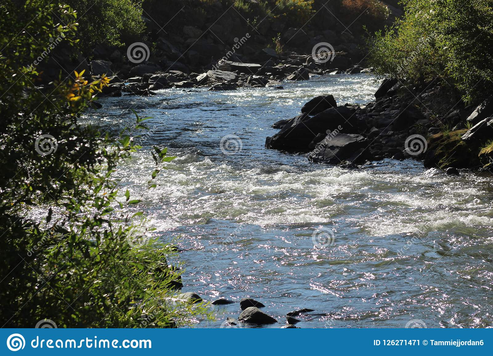 Rocky Mountain Clearview Stream I