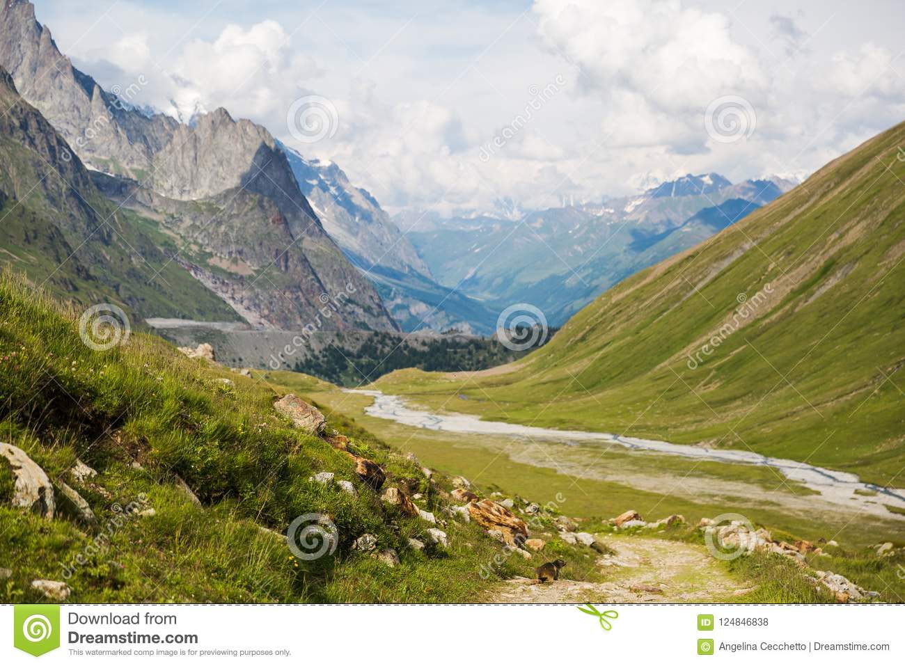 Rocky Mountain Landscape with Marmot on Mont-Blanc Trail