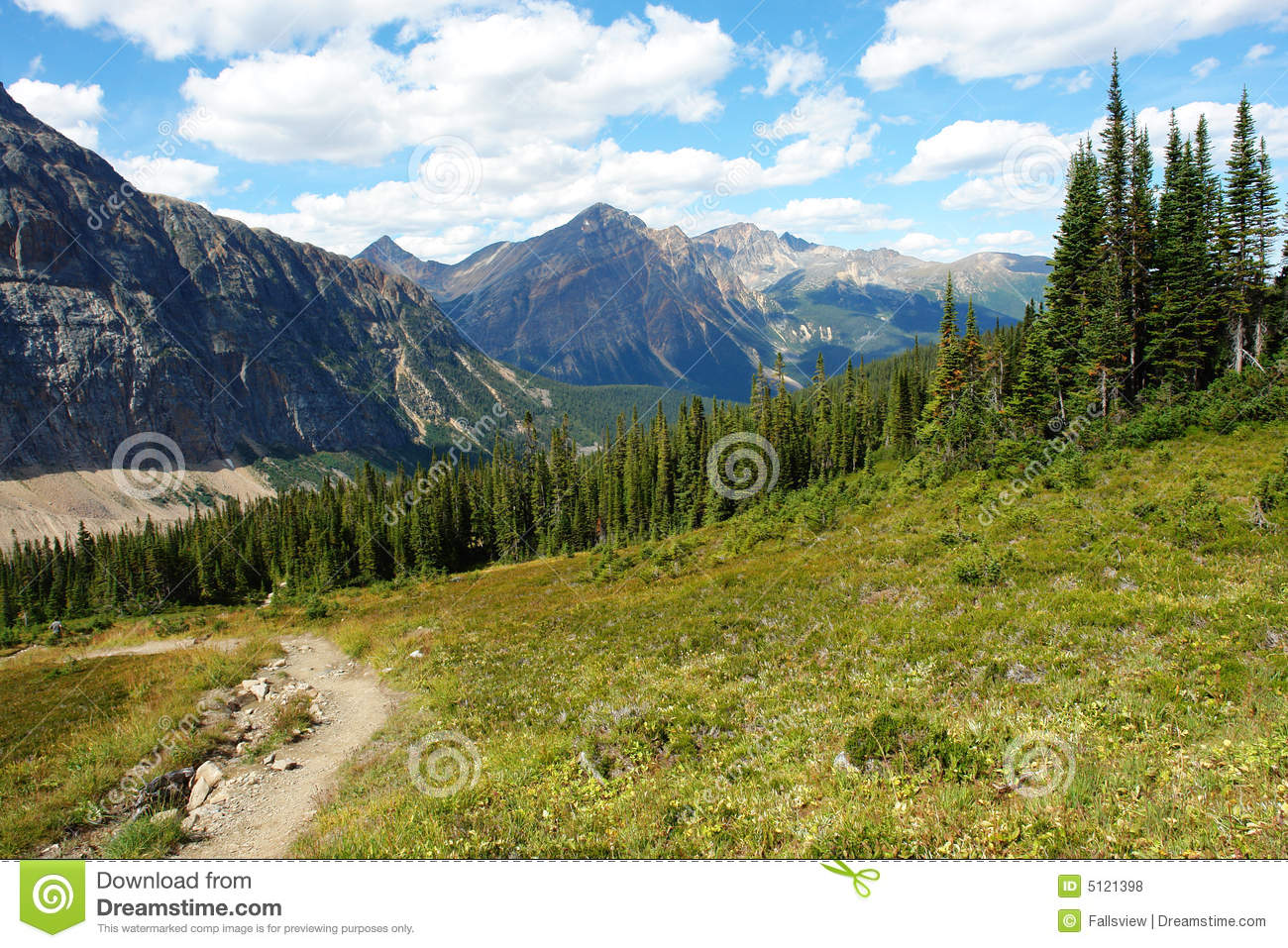 Rocky mountain and meadow