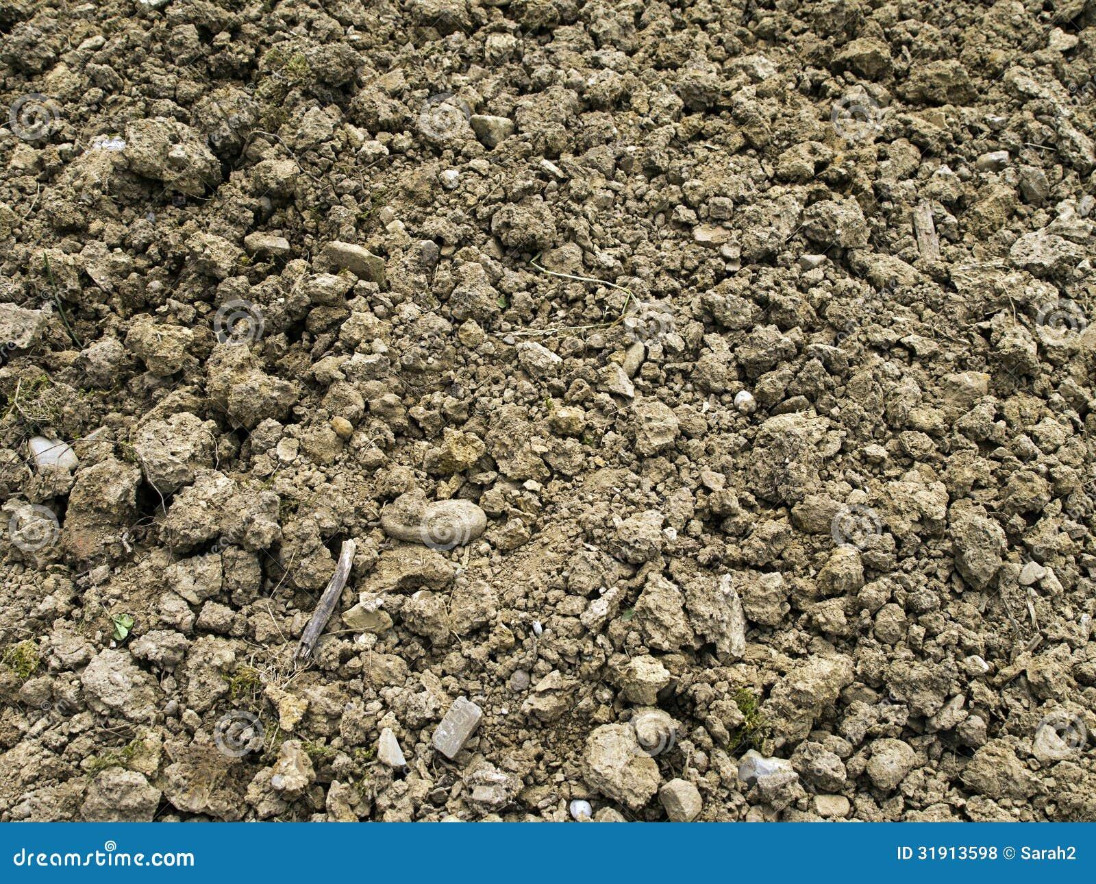 Rocky Poor Garden Soil Background Royalty Free Stock Photos - Image ...