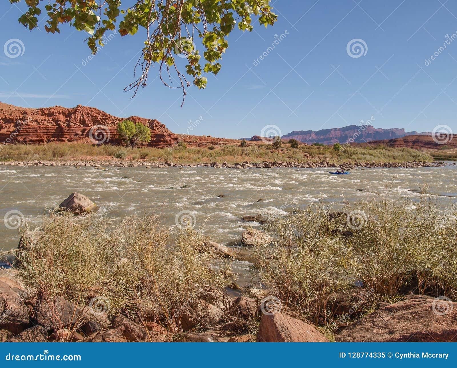Rocky Rapids op de Rivier van Colorado