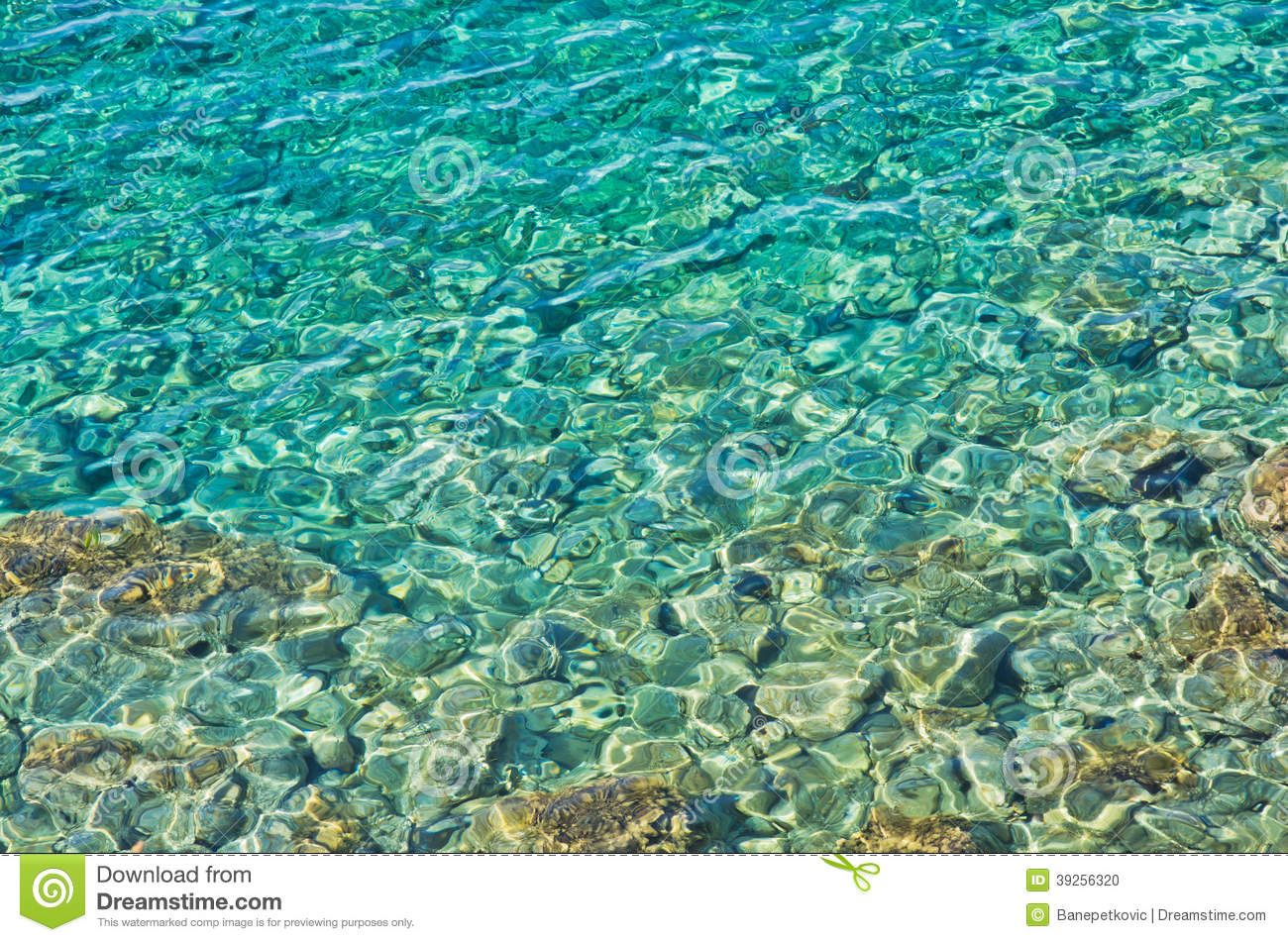 Nature S Crystal Water Prices