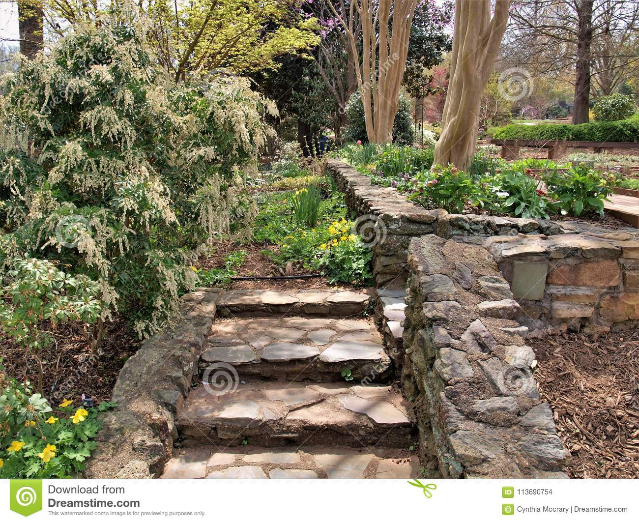 Download Rocky Garden Steps And Walls Stock Photo   Image Of Stone, Stones:  113690754