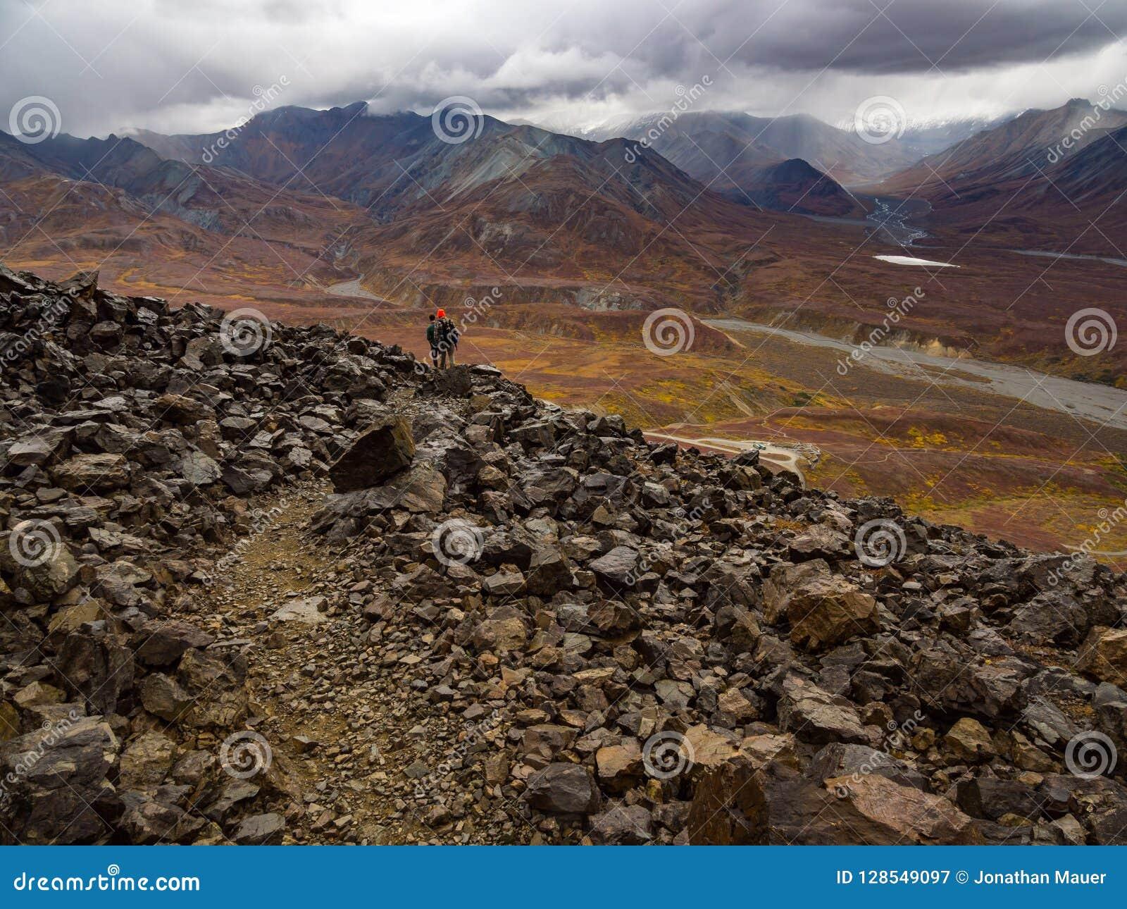 Rocky Trail, vue d Alaska de montagne en automne, parc national de Denali